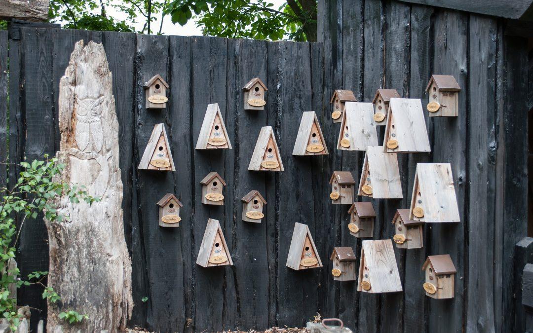Nestkasten voor vogels, wat je moet weten